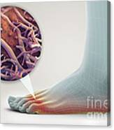 Athletes Foot Canvas Print