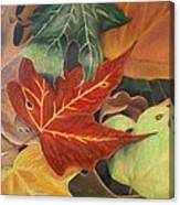 Autumn Leaves In Layers Canvas Print