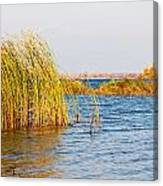 Autumn On The Dnieper River Canvas Print