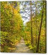 Beautiful Autumn Forest Mountain Stair Path At Sunset Canvas Print