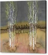 2 Birch Groves Canvas Print
