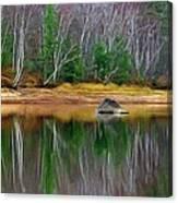 Birch Shoreline Canvas Print