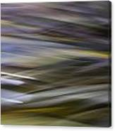 Blurscape Canvas Print