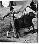 Bull Fight Matador Charging Bull Us-mexico  Border Town Nogales Sonora Mexico 1978-2012 Canvas Print