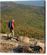 Cadillac Mountain, Acadia National Park Canvas Print