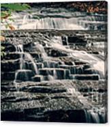 Cascadilla Gorge Canvas Print