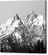 Cathedral Group Grand Teton National Canvas Print