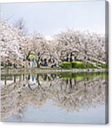 Cherry Blossoms In Tokyo Canvas Print