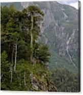 Chile South America Lago El Toro Canvas Print
