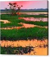 Chobe River Sunset Canvas Print