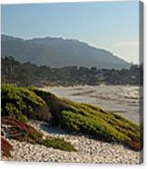 Coastal View - Ice Plant  Canvas Print
