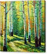 Colors Of The Season Canvas Print