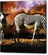 Creation Zebra Canvas Print