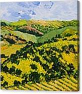 Deep Valley Canvas Print