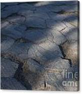 Devils Postpile National Monument Canvas Print