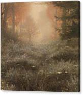 Dew Drenched Furze  Canvas Print