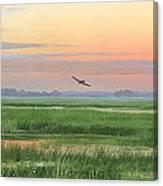 Divine Whisper Canvas Print