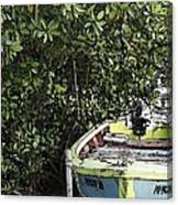 Docked By The Mangrove Trees Canvas Print