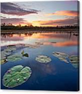 Everglades At Sunset Canvas Print