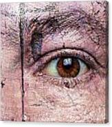 Eye On Environment Canvas Print