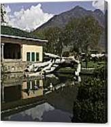 Fallen Tree In Water Pool Inside The Shalimar Garden In Srinagar Canvas Print
