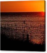 Fence And The Sun Canvas Print