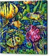 Fish Tales IIi Canvas Print