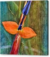 Floral Contentment Canvas Print