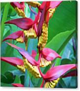 Flower 99 Canvas Print