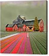 Flower Field Series Canvas Print