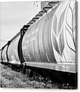freight grain trucks on former canadian pacific railway now great sandhills railway through leader S Canvas Print
