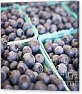 Fresh Blueberries Canvas Print