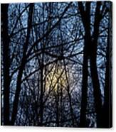 Frosted Winter Moon Canvas Print
