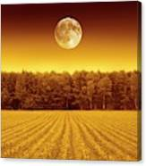 Full Moon Over A Field Canvas Print