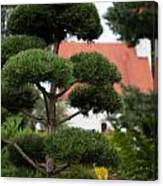 Garden Landscape - Topiary Canvas Print
