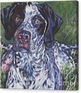 German Shorthaired Pointer Canvas Print