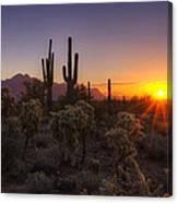 Good Morning Arizona  Canvas Print
