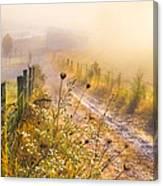 Good Morning Farm Canvas Print