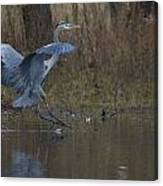 Great Blue Water Landing Canvas Print