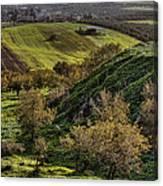 Green Valley  Canvas Print