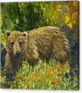 Grizzly Study 2 Canvas Print