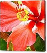 Happy Hibiscus Canvas Print