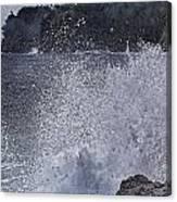Hawaii Big Island Coastline V2 Canvas Print