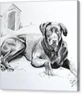 Hershey Canvas Print