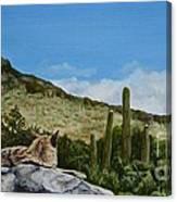 His Domain Canvas Print