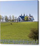 Horse Farm Canvas Print