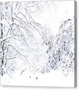 Hurricane Sandy Snow  Canvas Print