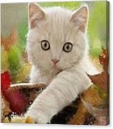 I Love Kittens Canvas Print