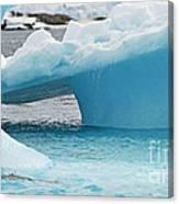 Ice Ice Baby.. Canvas Print