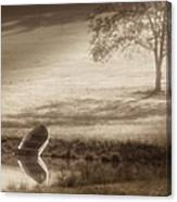 In Quiet Solitude Canvas Print